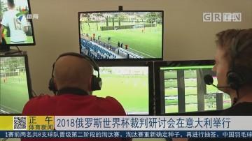 2018俄罗斯世界杯裁判研讨会在意大利举行