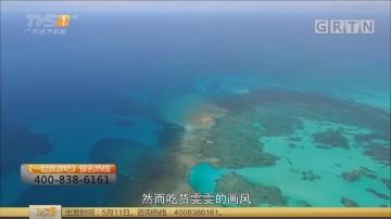[HD][2018-04-03]一起旅游吧:马来西亚沙巴