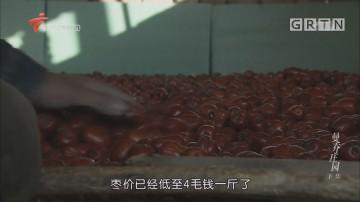 [HD][2018-04-03]中国梦·创新动力:秦晋黄河大峡谷里的曼乔庄园(下集)