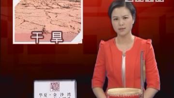 [2018-04-13]有话直讲:海丰梅陇:平安洞水库库容急剧下降