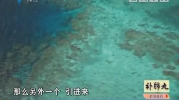 广州天河区一带一路发展促进委员会揭牌