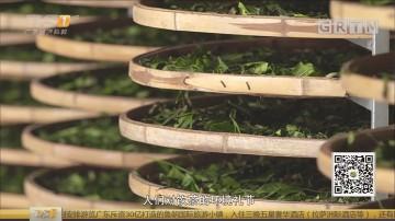 [HD][2018-05-03]一起旅游吧:陕西 西安