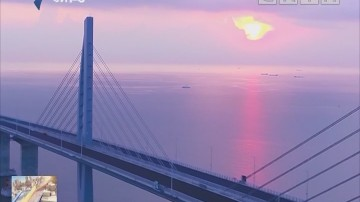 港珠澳大桥:海上游开通 近距离欣赏世纪工程壮美雄姿