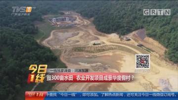 一线独家调查:河源东源 毁300亩水田 农业开发项目成豪华度假村?