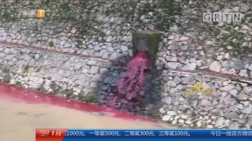 东莞塘厦:河涌变血红色有人偷排?环保部门介入
