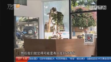 东莞长安:恶作剧?店铺玻璃屡遭破坏警方介入
