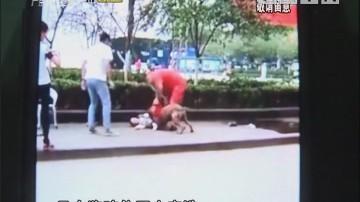 烈犬拴在人行道 4岁男童被咬伤
