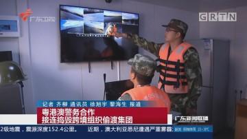 粤港澳警务合作 接连捣毁跨境组织偷渡集团