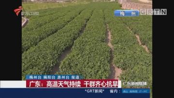 广东:高温天气持续 干群齐心抗旱