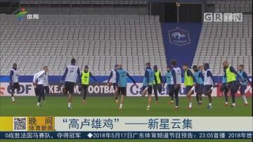 """""""高卢雄鸡""""——新星云集"""