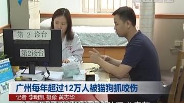 广州每年超过12万人被猫狗抓咬伤