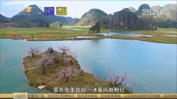 [HD][2018-06-12]一起旅游吧:菜花箐