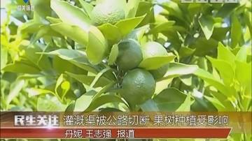 韶关:灌溉渠被公路切断 果树种植受影响