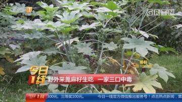 东莞:野外采蓖麻籽生吃 一家三口中毒
