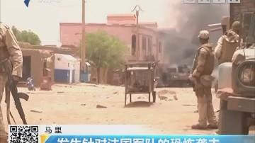 马里:发生针对法国军队的恐怖袭击