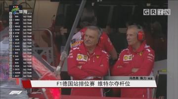 F1德国站排位赛 维特尔夺杆位