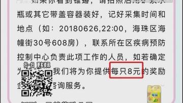"""全城悬赏抓虫 """"木虱王""""一只8元"""