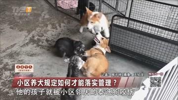 小区养犬规定如何才能落实管理?