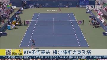 WTA圣何塞站 梅尔滕斯力克孔塔