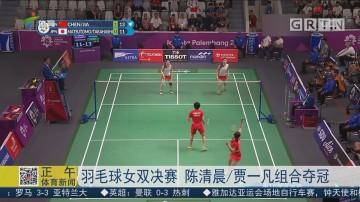 羽毛球女双决赛 陈清晨/贾一凡组合夺冠