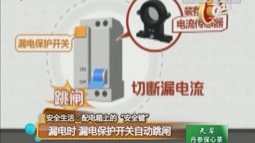 """安全生活:配电箱上的""""安全键"""" 漏电时 漏电保护开关自动跳闸"""