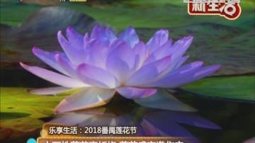 乐享生活:2018番禺莲花节 十万株莲花竞妖娆 莲花盛宴邀你来