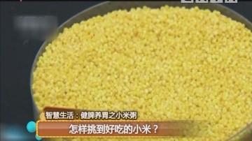智慧生活:健脾养胃之小米粥 怎样挑到好吃的小米?