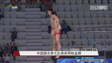 中国跳水梦之队再获两枚金牌