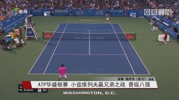 ATP华盛顿赛 小兹维列夫赢兄弟之战 晋级八强