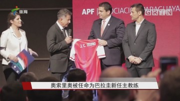奥索里奥被任命为巴拉圭新任主教练