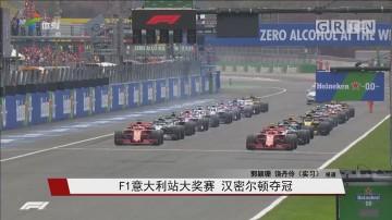 F1意大利站大奖赛 汉密尔顿夺冠