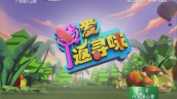[2018-09-12]我爱返寻味:制作姜葱煨北江鲤