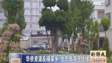 华侨资源反哺家乡 生态旅游守住绿水青山