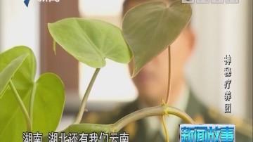 [2018-09-17]新闻故事:神秘疗养团