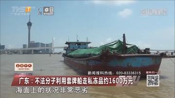 广东:不法分子利用套牌船走私冻品约1600万元