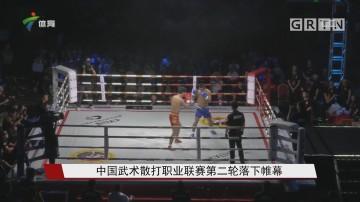 中国武术散打职业联赛第二轮落下帷幕