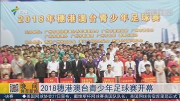 2018穗港澳台青少年足球赛开幕