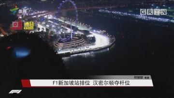 F1新加坡站排位 汉密尔顿夺杆位