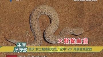 """肇庆:女士被毒蛇咬伤,""""空中120""""开展生死营救"""
