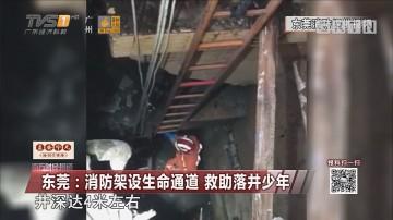 东莞:消防架设生命通道 救助落井少年