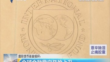 国际货币基金组织: 全球金融稳定风险上升
