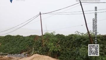 [2018-11-13]社会纵横:汕尾 数百亩集体土地被违法贱卖贱租 费用去向不明