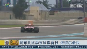 阿布扎比季末试车首日 维特尔最快