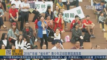 """2018广东省""""省长杯"""" 青少年足球联赛圆满落幕"""