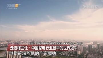 壮阔东方潮 奋进新时代——庆祝改革开放四十周年大型系列报道 走进格兰仕:中国家电行业最早的世界冠军