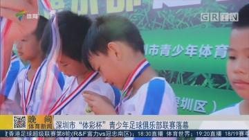 """深圳市""""体彩杯""""青少年足球俱乐部联赛落幕"""