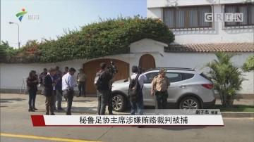 秘鲁足协主席涉嫌贿赂裁判被捕
