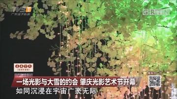 一场光影与大雪的约会 肇庆光影艺术节开幕