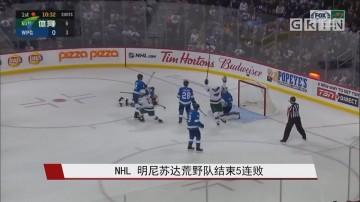 NHL 明尼苏达荒野队结束5连败