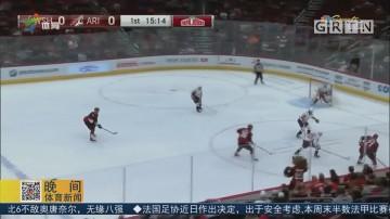 NHL 闪电队力克棕熊